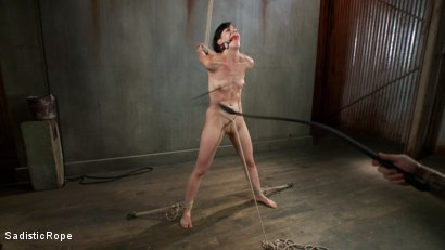 Photo number 14 from This Bitch Will Suffer in My Ropes!!! shot for Sadistic Rope on Kink.com. Featuring Elise Graves in hardcore BDSM & Fetish porn.