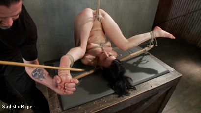 Photo number 12 from This Bitch Will Suffer in My Ropes!!! shot for Sadistic Rope on Kink.com. Featuring Elise Graves in hardcore BDSM & Fetish porn.
