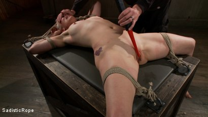 Photo number 14 from <strong>Destroying Lorelei Lee!!</strong><br> Inverted Sybian Suspension Blows her Mind shot for Sadistic Rope on Kink.com. Featuring Lorelei Lee in hardcore BDSM & Fetish porn.