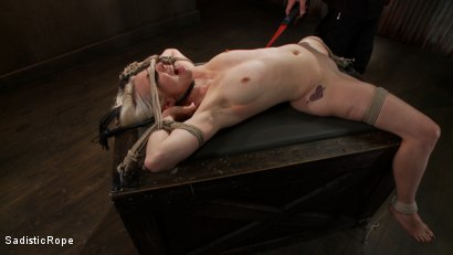 Photo number 15 from <strong>Destroying Lorelei Lee!!</strong><br> Inverted Sybian Suspension Blows her Mind shot for Sadistic Rope on Kink.com. Featuring Lorelei Lee in hardcore BDSM & Fetish porn.
