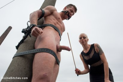 Photo number 4 from Eastern European Expeditions # 2: Teased and Denied Euro Slave Cock shot for Divine Bitches on Kink.com. Featuring Lorelei Lee and Ivo in hardcore BDSM & Fetish porn.