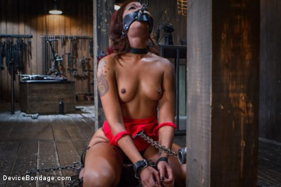 Photo number 4 from Rising from the ash <br>Skin Diamond is fucked brutal bondage!! shot for Device Bondage on Kink.com. Featuring Skin Diamond and Orlando in hardcore BDSM & Fetish porn.