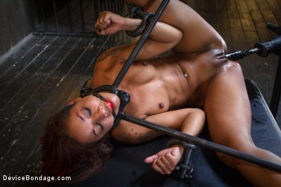 Photo number 9 from Rising from the ash <br>Skin Diamond is fucked brutal bondage!! shot for Device Bondage on Kink.com. Featuring Skin Diamond and Orlando in hardcore BDSM & Fetish porn.