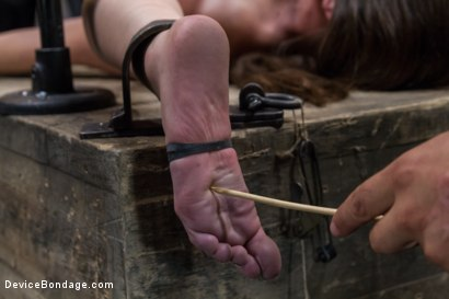 Photo number 11 from Double Teamed-Extreme Bondage,Brutal Suffering, and Squirting Orgasms shot for Device Bondage on Kink.com. Featuring Orlando and Casey Calvert in hardcore BDSM & Fetish porn.