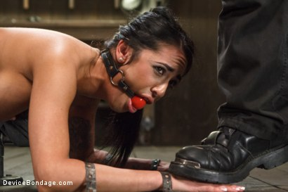 Photo number 12 from Wipe that smile off of your face, whore! shot for Device Bondage on Kink.com. Featuring Alexa Aimes in hardcore BDSM & Fetish porn.