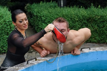Photo number 3 from Garden of Submission: Sandra Romain Returns! shot for Divine Bitches on Kink.com. Featuring Sandra Romain and Martin Love in hardcore BDSM & Fetish porn.