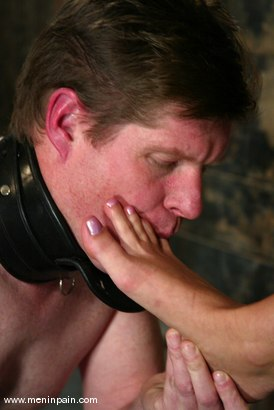 Photo number 2 from Sterling Ward and Hollie Stevens shot for Men In Pain on Kink.com. Featuring Hollie Stevens and Sterling Ward in hardcore BDSM & Fetish porn.