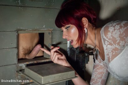 Photo number 4 from Maitresse Madeline Whips, Fucks and Teases Fresh Euro Meat shot for Divine Bitches on Kink.com. Featuring Chris Hollander and Maitresse Madeline Marlowe in hardcore BDSM & Fetish porn.
