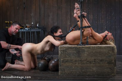 Photo number 5 from 1 MILF + 1 Pain Slut = 2 Whores Suffering shot for Device Bondage on Kink.com. Featuring Cherie DeVille and Juliette March in hardcore BDSM & Fetish porn.