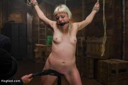 Photo number 13 from Twisted Tale of a Captive Creamer shot for Hogtied on Kink.com. Featuring Elyssa Greene in hardcore BDSM & Fetish porn.