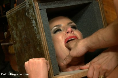 Photo number 4 from Penthouse Pet Phoenix Marie Ass Fucked in Public shot for Public Disgrace on Kink.com. Featuring Phoenix Marie and Mr. Pete in hardcore BDSM & Fetish porn.