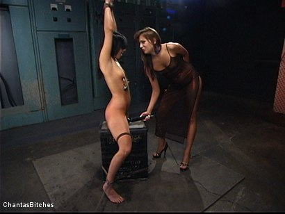 Photo number 1 from Sweet And Innocent shot for Chantas Bitches on Kink.com. Featuring Ashli  Orion and Nika Noire in hardcore BDSM & Fetish porn.