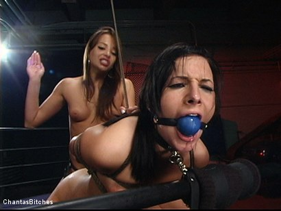 Photo number 11 from Sweet And Innocent shot for Chantas Bitches on Kink.com. Featuring Ashli  Orion and Nika Noire in hardcore BDSM & Fetish porn.
