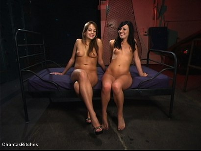 Photo number 16 from Sweet And Innocent shot for Chantas Bitches on Kink.com. Featuring Ashli  Orion and Nika Noire in hardcore BDSM & Fetish porn.