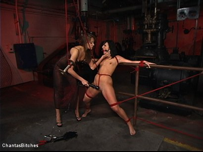 Photo number 3 from Sweet And Innocent shot for Chantas Bitches on Kink.com. Featuring Ashli  Orion and Nika Noire in hardcore BDSM & Fetish porn.