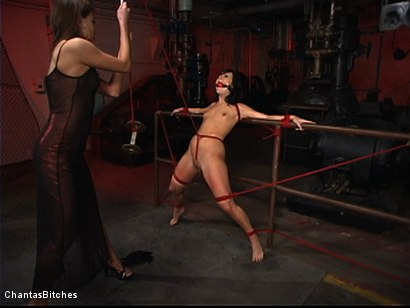 Photo number 4 from Sweet And Innocent shot for Chantas Bitches on Kink.com. Featuring Ashli  Orion and Nika Noire in hardcore BDSM & Fetish porn.