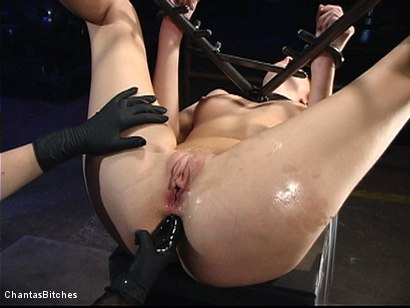 Photo number 8 from Hungarian Ass Slut shot for Chantas Bitches on Kink.com. Featuring Marsha Lord in hardcore BDSM & Fetish porn.