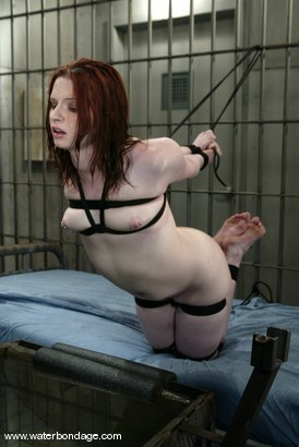 Photo number 12 from Claire Adams shot for Water Bondage on Kink.com. Featuring Claire Adams in hardcore BDSM & Fetish porn.