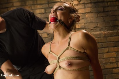 Photo number 14 from Horny Little Latin Fuck Overpowered by Orgasms and Bondage shot for Hogtied on Kink.com. Featuring Luna Light in hardcore BDSM & Fetish porn.