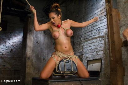 Photo number 7 from Unfuckingbelievable Soaking Wet Squirting Snatch and Huge Natural Tits shot for Hogtied on Kink.com. Featuring Serena Ali in hardcore BDSM & Fetish porn.