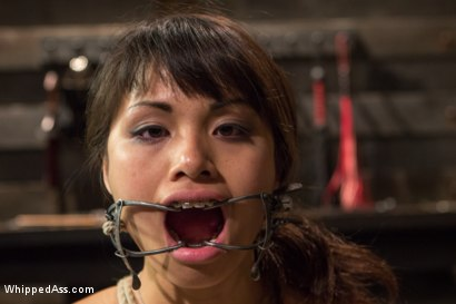 Photo number 12 from Braces, Bondage And No Mercy shot for Whipped Ass on Kink.com. Featuring Felony and Milcah Halili in hardcore BDSM & Fetish porn.