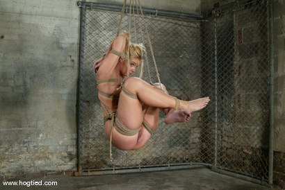 Photo number 5 from Hollie Stevens and Sir C shot for Hogtied on Kink.com. Featuring Sir C and Hollie Stevens in hardcore BDSM & Fetish porn.