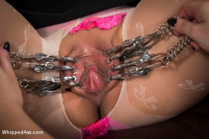 Photo number 1 from Mz. Berlin Clamps, Whips, and Double Stuffs Newbie Vivi Marie shot for Whipped Ass on Kink.com. Featuring Mz Berlin and Vivi Marie in hardcore BDSM & Fetish porn.