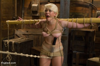 Photo number 7 from Blond College Student Tied Tight and Brutally Fucked    shot for Hogtied on Kink.com. Featuring Lexi LaRue in hardcore BDSM & Fetish porn.