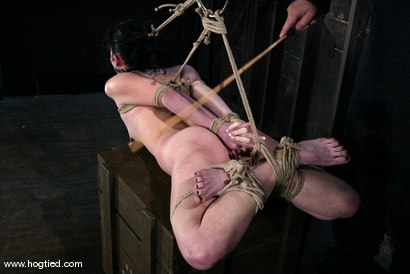 Photo number 11 from Ariel X shot for Hogtied on Kink.com. Featuring Ariel X in hardcore BDSM & Fetish porn.