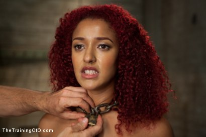 Photo number 2 from Anal Training Miss Daisy, Day One shot for The Training Of O on Kink.com. Featuring Daisy Ducati in hardcore BDSM & Fetish porn.