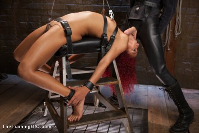 Photo number 7 from Anal Training Miss Daisy, Day Two shot for The Training Of O on Kink.com. Featuring Daisy Ducati and Owen Gray in hardcore BDSM & Fetish porn.