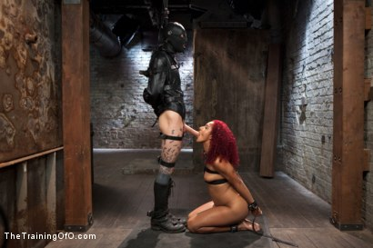 Photo number 5 from Training a Slave to Take it in the Ass, Day Three shot for The Training Of O on Kink.com. Featuring Daisy Ducati and Owen Gray in hardcore BDSM & Fetish porn.