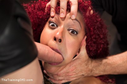 Photo number 6 from Training a Slave to Take it in the Ass, Day Three shot for The Training Of O on Kink.com. Featuring Daisy Ducati and Owen Gray in hardcore BDSM & Fetish porn.