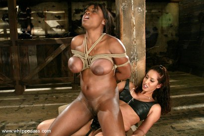 Photo number 10 from Isis Love and Jada Fire shot for Whipped Ass on Kink.com. Featuring Isis Love and Jada Fire in hardcore BDSM & Fetish porn.