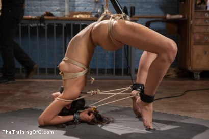 Photo number 9 from Punishing the Bad Girl, Day One shot for The Training Of O on Kink.com. Featuring Lyla Storm in hardcore BDSM & Fetish porn.