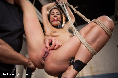 Photo number 6 from Punishing the Bad Girl, Day One shot for The Training Of O on Kink.com. Featuring Lyla Storm in hardcore BDSM & Fetish porn.