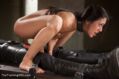 Photo number 11 from Punishing The Bad Girl, Day Two shot for The Training Of O on Kink.com. Featuring Owen Gray and Lyla Storm in hardcore BDSM & Fetish porn.