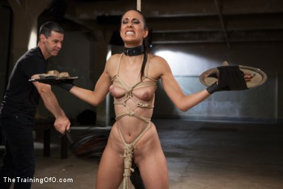 Photo number 3 from Punishing The Bad Girl, Day Two shot for The Training Of O on Kink.com. Featuring Owen Gray and Lyla Storm in hardcore BDSM & Fetish porn.