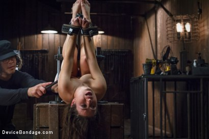 Photo number 7 from <strong>Broken Whore</strong> shot for Device Bondage on Kink.com. Featuring Orlando and Serena Blair in hardcore BDSM & Fetish porn.