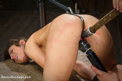 Photo number 4 from <strong>Broken Whore</strong> shot for Device Bondage on Kink.com. Featuring Orlando and Serena Blair in hardcore BDSM & Fetish porn.