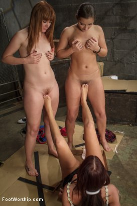 Photo number 14 from Horny little foot sluts hungry for feet! shot for Foot Worship on Kink.com. Featuring Claire Robbins, Dani Daniels and Cassandra Nix in hardcore BDSM & Fetish porn.