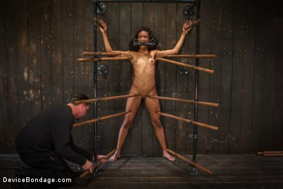 Photo number 12 from Sadistic Embrace shot for Device Bondage on Kink.com. Featuring Nikki Darling in hardcore BDSM & Fetish porn.