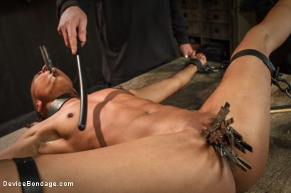 Photo number 7 from Sadistic Embrace shot for Device Bondage on Kink.com. Featuring Nikki Darling in hardcore BDSM & Fetish porn.