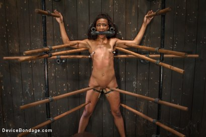 Photo number 11 from Sadistic Embrace shot for Device Bondage on Kink.com. Featuring Nikki Darling in hardcore BDSM & Fetish porn.