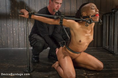 Photo number 15 from Sadistic Embrace shot for Device Bondage on Kink.com. Featuring Nikki Darling in hardcore BDSM & Fetish porn.
