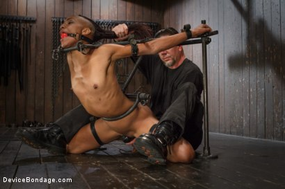 Photo number 3 from Sadistic Embrace shot for Device Bondage on Kink.com. Featuring Nikki Darling in hardcore BDSM & Fetish porn.