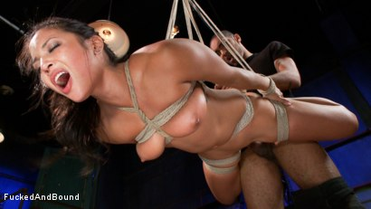 Photo number 8 from Penthouse Pet, Adrianna Luna gets Fucked and Bound!!! shot for Fucked and Bound on Kink.com. Featuring Adrianna Luna and Mickey Mod in hardcore BDSM & Fetish porn.
