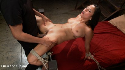 Photo number 5 from Penthouse Pet, Adrianna Luna gets Fucked and Bound!!! shot for Fucked and Bound on Kink.com. Featuring Adrianna Luna and Mickey Mod in hardcore BDSM & Fetish porn.