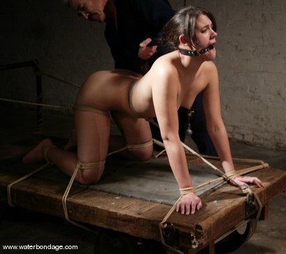 Photo number 4 from Penny Barber shot for waterbondage on Kink.com. Featuring Penny Barber in hardcore BDSM & Fetish porn.