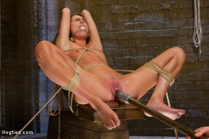 Photo number 9 from Gorgeous Newcomer Destroyed by Bondage and Squirting Orgasms shot for Hogtied on Kink.com. Featuring Roxy Rox in hardcore BDSM & Fetish porn.